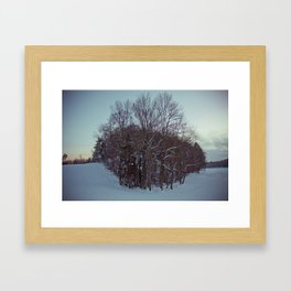 Frozen forest. Framed Art Print
