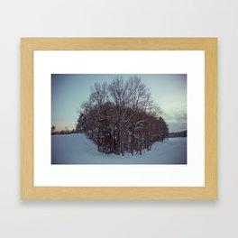 Frozen forest. Framed Art Print