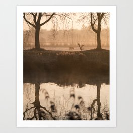 The Early Bird Captures The Shot Art Print