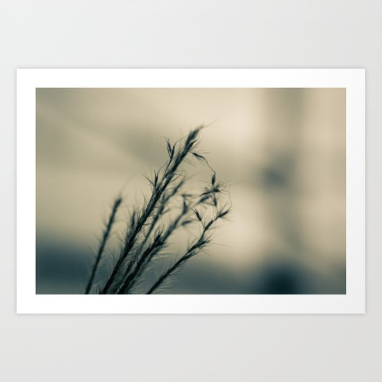 A Winter Story Art Print