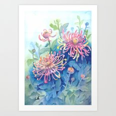 Chrisanthemum Art Print