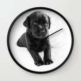 Black labrador puppy Wall Clock