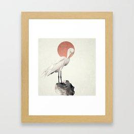 White Wings Framed Art Print