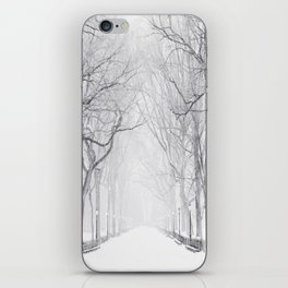 Snowy Park iPhone Skin