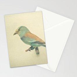 Bird Study #2 Stationery Cards