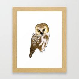 Woodland Creatures Series: Owl Framed Art Print