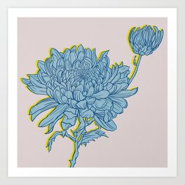 Chrysanthemum in Blue Art Print