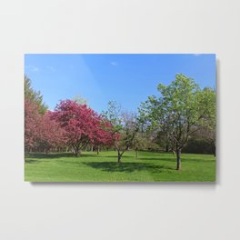 Your Life Is Waiting Metal Print