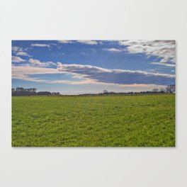 Forever Pastures Canvas Print