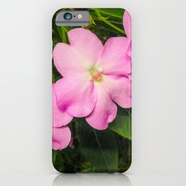 Pink Impatiens Flowers iPhone Case