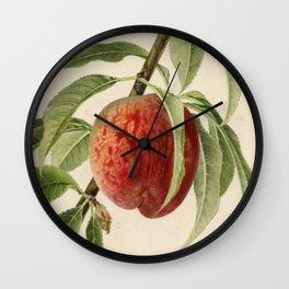 Vintage Illustration of a Peach Branch Wall Clock