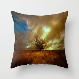 English landscape with lone tree, UK Throw Pillow