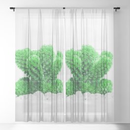 Modern Cactus VIII Sheer Curtain