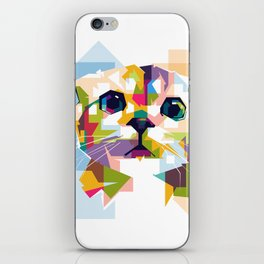 Little colorful cat iPhone Skin