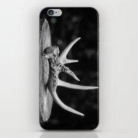 antler iPhone & iPod Skins featuring Antler by Danielle Fedorshik