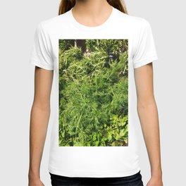Green Vegetable Herbs T-shirt
