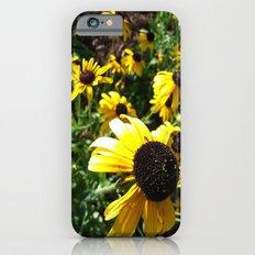 black eye susans Slim Case iPhone 6s