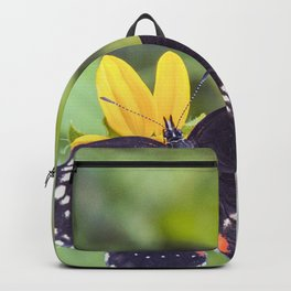 Bordered Patch Butterfly by Murray Bolesta Backpack