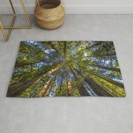 Coastal Redwoods aka Coast Redwood and California Redwood (Sequoia sempervirens) Rug