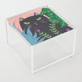 Jungle Cat Acrylic Box