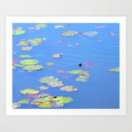 Channing Pond Art Print