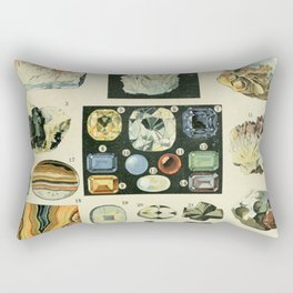Vintage Minerals Chart Rectangular Pillow