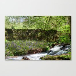 Bluebells By The Stream Canvas Print
