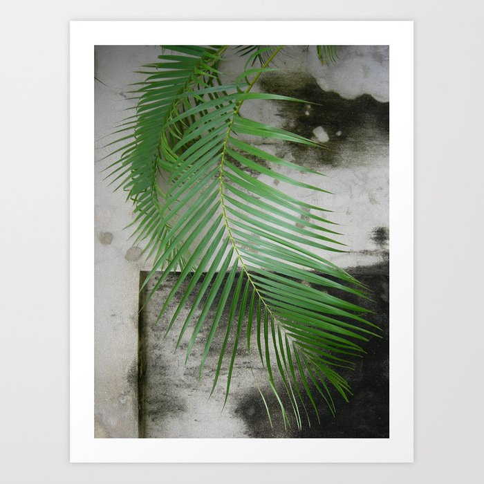 Backdrop Art Print
