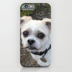 Molly iPhone 6s Slim Case