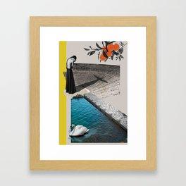 A Homeland souvenir #2: The theater, the swan & the oranges. Framed Art Print