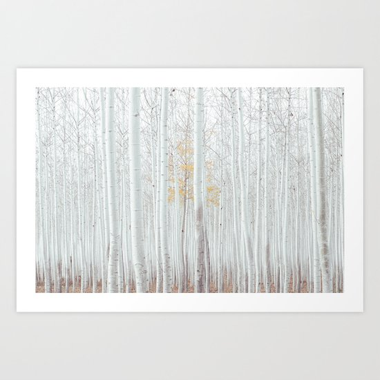 Pale Forest Art Print