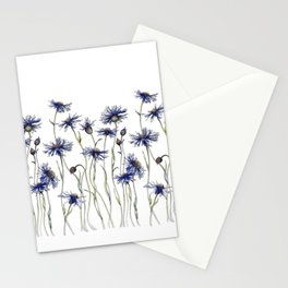 Blue Cornflowers, Illustration Stationery Cards