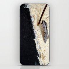 Hurdle iPhone & iPod Skin