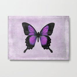 Purple and Radiant Orchid Butterfly Metal Print