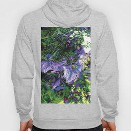 Abstracted Purple Petunias Hoody