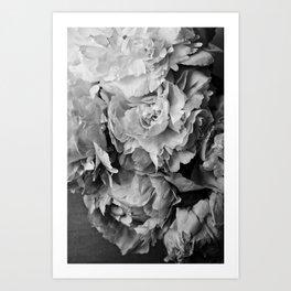 Peonies Black and White 1 Art Print
