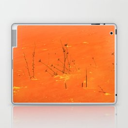 Winter Grasses Laptop & iPad Skin