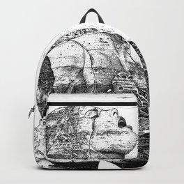 asc 757 - La nostalgie est une île (The remains) Backpack