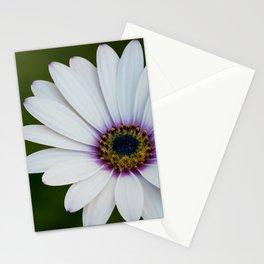 Blue Eyed Daisy Stationery Cards