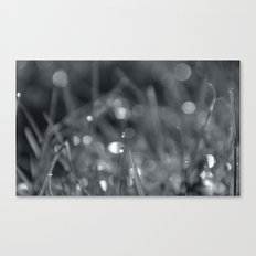 My reflections Canvas Print