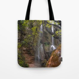 Forest waterfall - Bulgaria Tote Bag