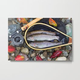 Autumn Trout Fly Fishing Metal Print