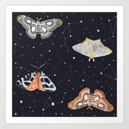 Midnight Moths Art Print