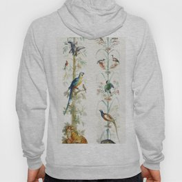 Decorative Depiction with Plants and Animals (1760-1799) by anonymous Hoody
