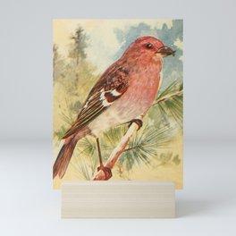 Vintage Print - White-winged Crossbill Mini Art Print