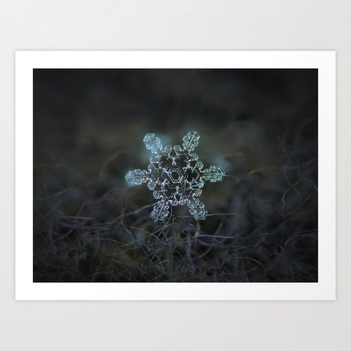 Real snowflake macro photo - Slight Asymmetry Art Print