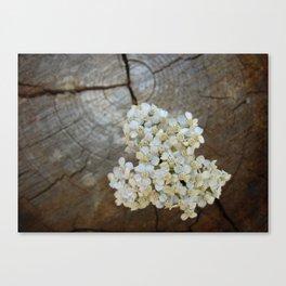 Flowerwood Canvas Print