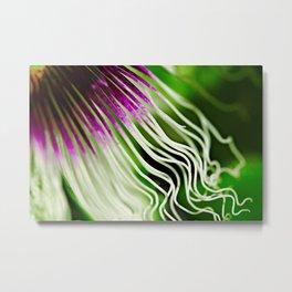 Passion flower filaments Metal Print