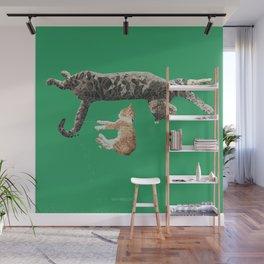 Kitten Nap Wall Mural