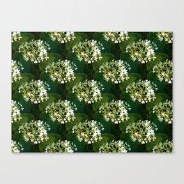 Hills-of-snow hydrangea pattern Canvas Print